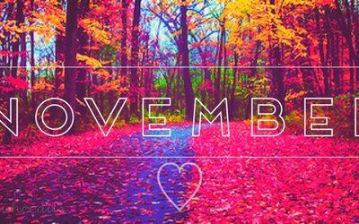 День 10: Ноябрь — Возможности